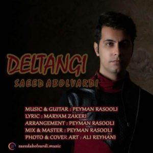 دانلود آهنگ دلتنگی از سعید ابوالوردی